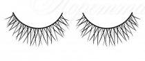 Baci Lingerie Lashes Collection Bl681
